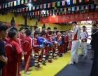 北京哪里学青年散打去龍圣搏击国际俱乐部万达店