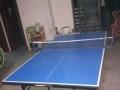 全新乒乓球桌低价转让