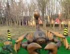 原始巨型昆虫仿真恐龙硅胶走动展览道具出租
