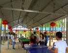 郑州郊区休闲一日游,吃喝玩乐全搞定