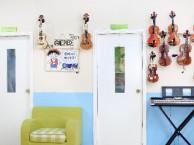 龙岗坂田小提琴 吉他 钢琴乐器学习,免费体验