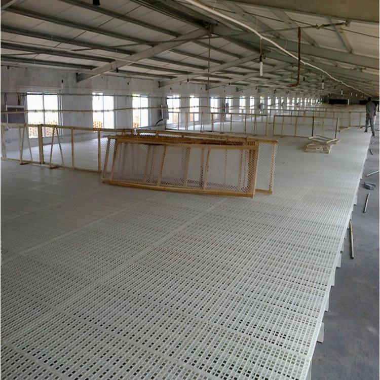 养鹅用塑料网床 种鹅用塑料网床 拼装塑料网床厂家