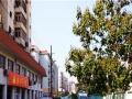 青岛市北福济老年公寓 让老人享受晚年生活