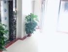 西丽 荔林山景 1室 1厅 43平米 出售荔林山景