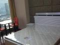 柯桥越隆大厦单身公寓 精装修 家具齐全 布置温馨 拎包入住