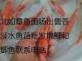 批发鲜花。出售各种淡水鱼苗批发锦鲤和红鲫鱼