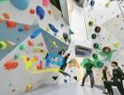 上海成人儿童攀岩墙工厂直销大型竞技比赛攀岩定制厂家