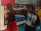 天津拳击格斗俱乐部 强身健体 防身自卫 专业培训授课