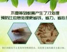 重慶專業抓鼠 重慶好的滅鼠公司 重慶滅白蟻中心