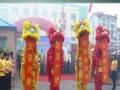 小天舞龙舞狮表演团