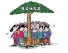 大厂北京社保代理补缴 公积金代理补缴 五险一金咨询