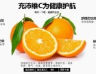 小博果园-新鲜赣南脐橙直供地-礼品装预订