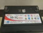 骆驼牌12v 60Ah 蓄电池