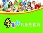 领先教育:英语、数学同步辅导班和晚托班