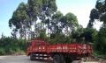 大货车B2驾驶证培训、A1 培训