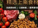 桥宝宠物饲料 全国批发猫粮狗粮