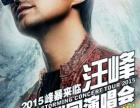 汪峰2015峰暴来临超级巡回演唱会 - 上海站