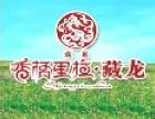 藏龙麻辣牦牛肉干 诚邀加盟