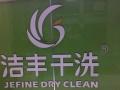干洗水洗、皮衣皮具清洗保养、沙发车垫清洗、裁缝灵活