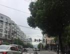 梧田 月乐西街店连屋 商业街卖场 122平米