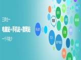 大武口网站建设