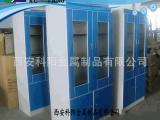 西安长期批发 全钢药品柜 药品存放柜 试剂柜 仪器柜