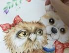 潍坊奎文区成人零基础手绘插画专业美术培训