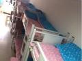 青年旅社床位单间 价格实惠 温馨公寓