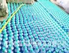 小型防冻液生产设备,玻璃水生产设备,洗车液生产设备