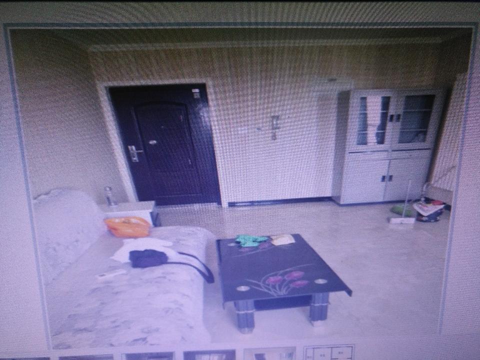 带电梯 家电全的两居室出租