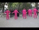 广州八段锦培训教学提供一对一教学 多人培训班教学易学易练