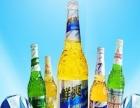 桂泉啤酒 桂泉啤酒加盟招商