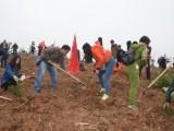 2020北京植樹基地推薦 平谷大峽谷植樹一日游 采摘草莓一日