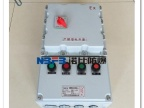 温州诺比防爆 防爆配电箱 动力照明箱