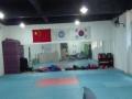 跆拳道训练场地招合作项目加盟 娱乐场所