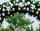 艺苑婚庆一条龙服务,2016新春特惠套餐火热预定中