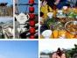 元旦每周末深圳大鹏古城+农家乐野炊+杨梅坑一日游