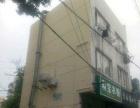 康乐山庄 商业街卖场 81平米