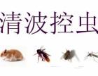 清波有害生物防治有限公司 专业灭鼠除虫20年