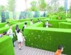 迷宫创作出租 绿植迷宫出租 绿植迷宫创意制作设施租赁价格