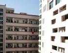 浮桥街道敬辉超市对面 厂房宿舍 300平米