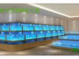 十年水族从业经验承接酒店海鲜缸制作饭店鱼缸龙虾缸