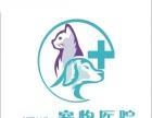 溪湖宠物医院(24小时宠物医院)长沙市
