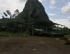 隆安 乔建镇廷罗村 仓库及土地 15000平米
