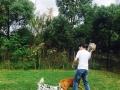 春节宠物度假 爱犬第二个家 专业无笼寄养