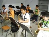 钢琴 萨克斯 古筝 小提琴 葫芦丝 吉他培训