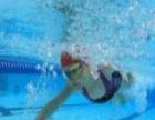怡海花园游泳健身俱乐部 怡海花园游泳健身俱乐部加盟招商