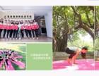 南京哪里有瑜伽考证 猿瑜伽考证直达教练 推荐就业