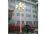 沧州景观灯价格 买LED景观灯就到河北桑能科技