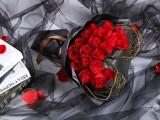 爱情鲜花.友情鲜花.生日鲜花.祝贺鲜花.婚庆鲜花.商务鲜花